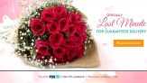 Fresh Flowers & Gifts for All Occasions Same Day Delivery with FREE Shipping